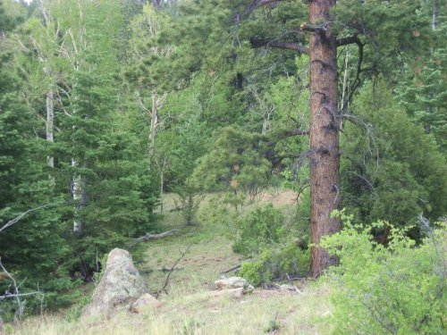230855- Beautiful Views With Lots : Cotopaxi : Fremont County : Colorado