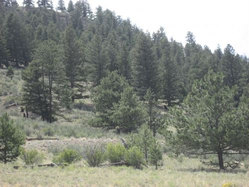 227344 Great Views Close To 3 Reser : Hartsel : Park County : Colorado