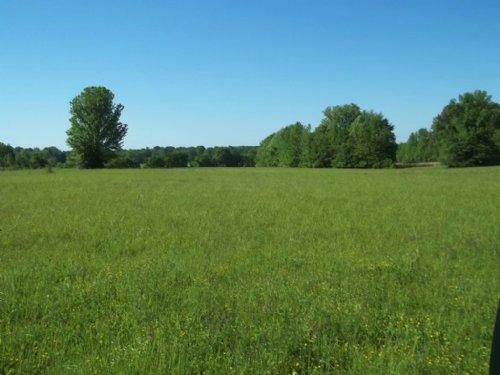 14.7 Ac. Pasture Land And Homesite : Senatobia : Tate County : Mississippi