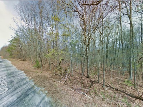 Lot For Sale In Lake Tansi : Crossville : Cumberland County : Tennessee