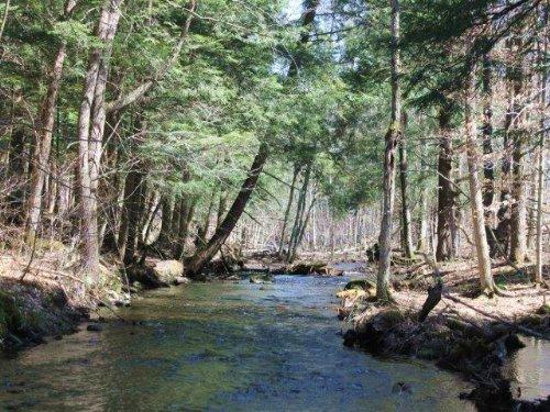 Land With Building Sites & Stream : Redfield : Oswego County : New York