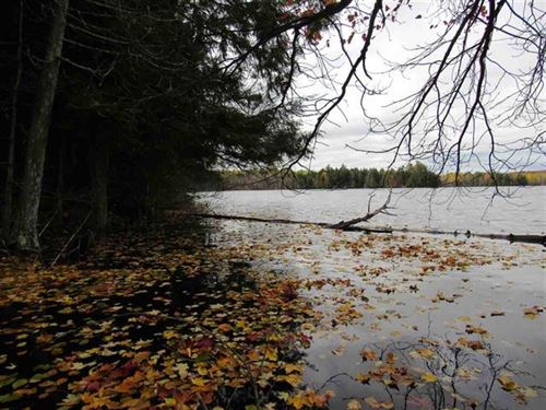 Lot 9 Little Africa Lk Rd, 1110671 : Watersmeet : Gogebic County : Michigan