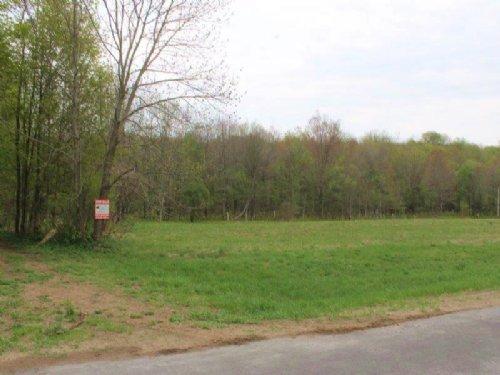 Land Near Salmon River 5 Acres : Williamstown : Oswego County : New York