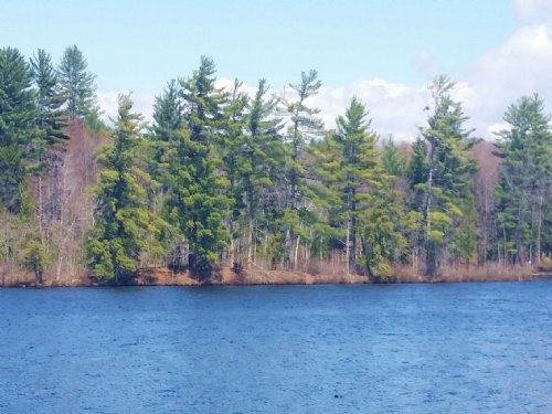 Waterfront Land On A Private Lake : Amboy : Oswego County : New York