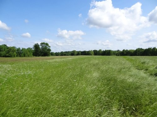 79.95ml Ac Development Or Home Site : Cabot : Lonoke County : Arkansas