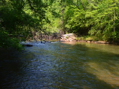 61.65 Acres On The Tyger River : Moore : Spartanburg County : South Carolina