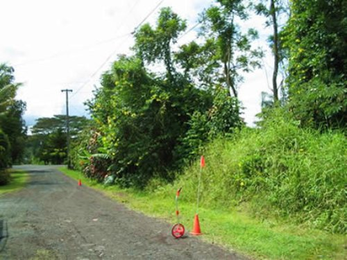 2 Adjoining 1/4 Acre Nanawale : Pahoa : Hawaii County : Hawaii