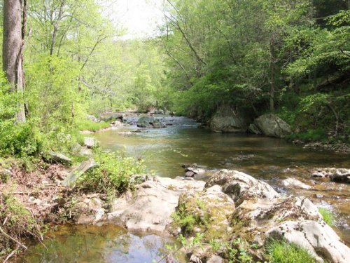 39 Acres W/frontage On Trout Stream : Mouth Of Wilson : Grayson County : Virginia