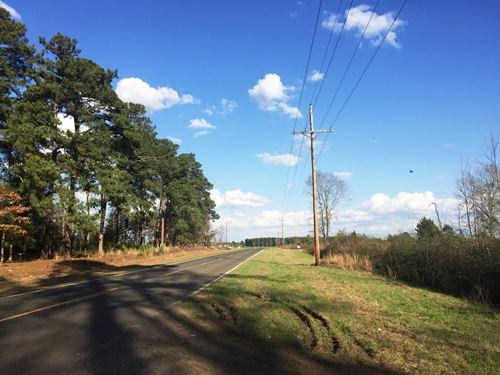 Potato Creek Tract : Summerton : Clarendon County : South Carolina