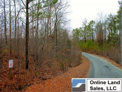 .57 Acre The Tennessean : Springville : Henry County : Tennessee