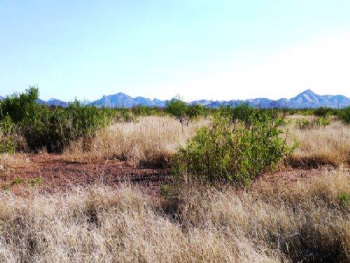 .22 Acre Cochise College Estates. : Douglas : Cochise County : Arizona