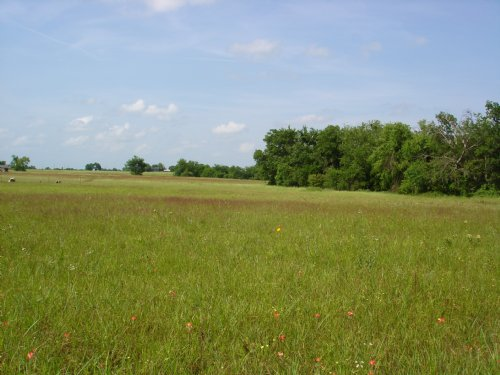 20 Country Home Acres For Sale : Sumner : Lamar County : Texas