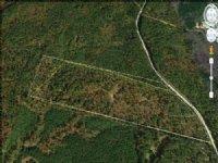 47.83 Ac Great Hunting / Recreation : Greensboro : Greene County : Georgia