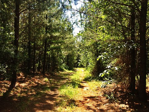 103 Acres : Ware Shoals : Laurens County : South Carolina