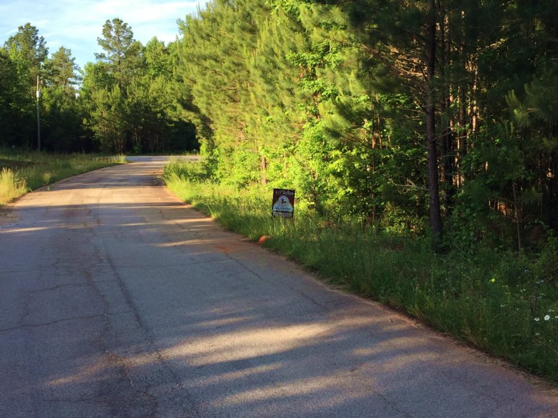 Wooded, Residential Lots : Monticello : Jasper County : Georgia