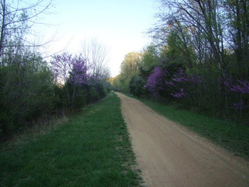 .21 Acre Roge Creek Valley. Terms : Old Mines : Washington County : Missouri