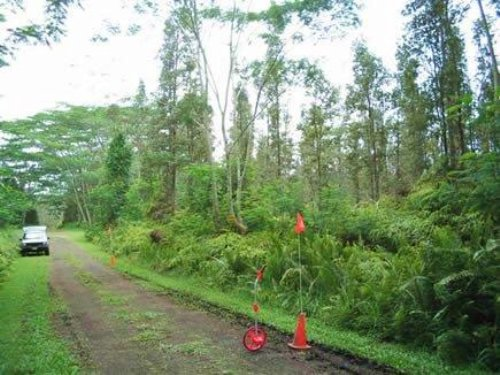 1/4 Acre Nanawale Estates. Terms : Pahoa : Hawaii County : Hawaii