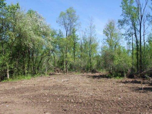 Land Near Salmon River Driveway : Richland : Oswego County : New York