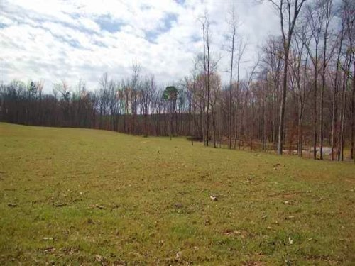 11.81 Ac W/pond & Ogeechee River : Crawfordville : Taliaferro County : Georgia