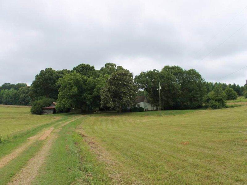 Farmhouse On 35+/- Acres : Ranburne : Cleburne County : Alabama