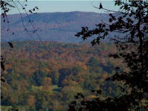 20+/- Acres With Water Views : South Pittsburg : Marion County : Tennessee