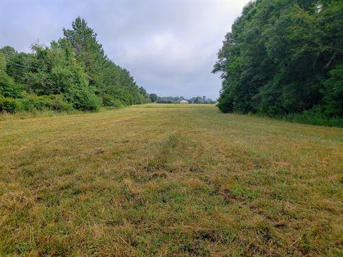 Fork Shoals Road Acreage : Piedmont : Greenville County : South Carolina