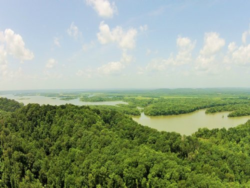 1,000+ Acres Adjoining National Wil : Waverly : Humphreys County : Tennessee