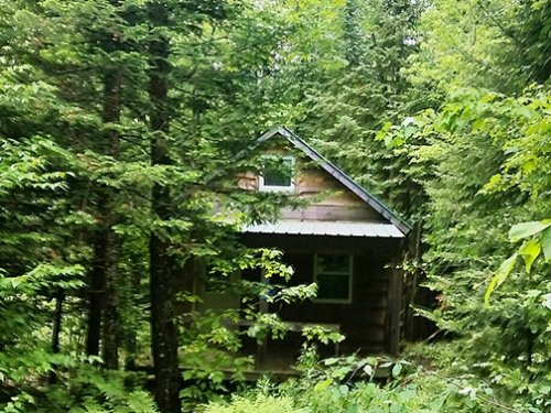 Cabin With Septic Private Driveway : Diana : Lewis County : New York