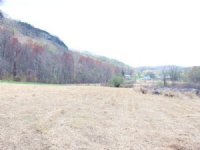 140+/- Acres, With Multiple Options : Wapwallopen : Luzerne County : Pennsylvania
