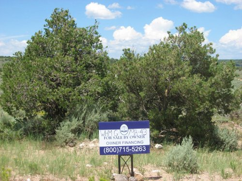 1.11 Acre, Next To Lake Sanchez : San Luis : Costilla County : Colorado