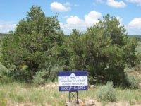 1.11 Acre, Next To Lake Sanchez : San Luis : Costilla County : Colorado