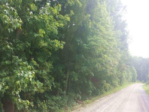 Green Town : Farmville : Prince Edward County : Virginia