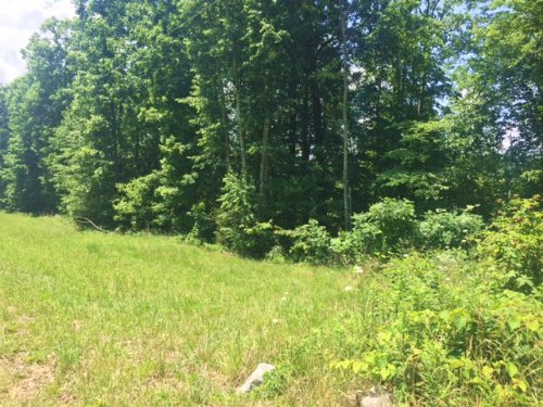 10+/- Acres Near South Pittsburg : South Pittsburg : Marion County : Tennessee