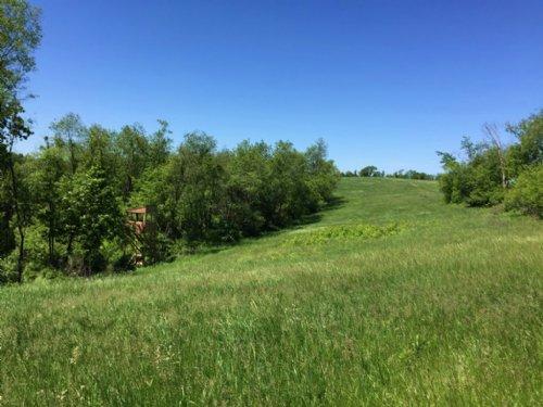 62 Acres On Castle Rock Creek : Muscoda : Grant County : Wisconsin