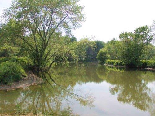 Land On Susquehanna River 155 Ac : Milford : Otsego County : New York