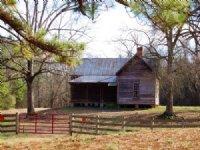 3100 Ft River Frontage/126 Acres : Crawfordville : Taliaferro County : Georgia