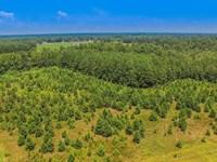 Farm & Hunting Near Darlington : Darlington : Darlington County : South Carolina