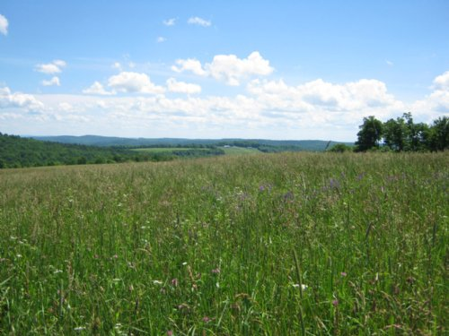 Farmland Near Ithaca Ny 209 Acres : Caroline : Tompkins County : New York