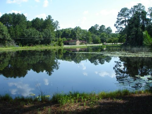 5 Acres With Home & Pond : Norman Park : Colquitt County : Georgia