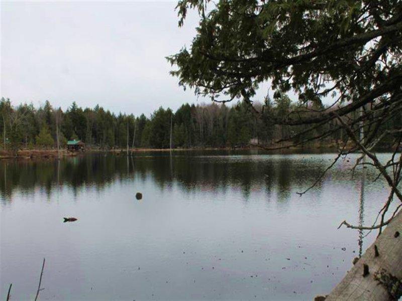 Lot 3 Channel Rd, Mls 1114303 : Watersmeet : Gogebic County : Michigan