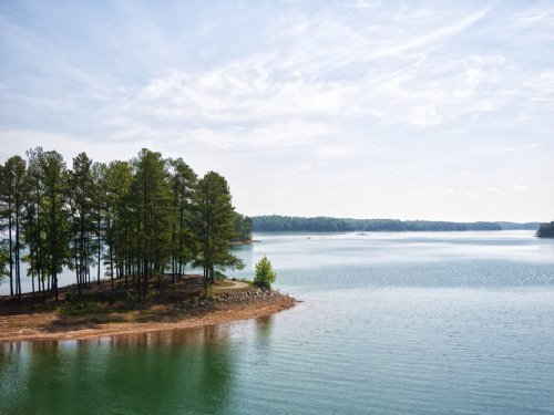 Amazing Peninsula Lakefront : Toccoa : Stephens County : Georgia
