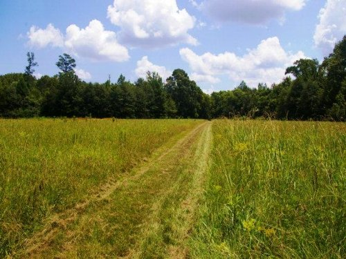 27 Acres In Lincoln County, Mississ : Bogue Chitto : Lincoln County : Mississippi