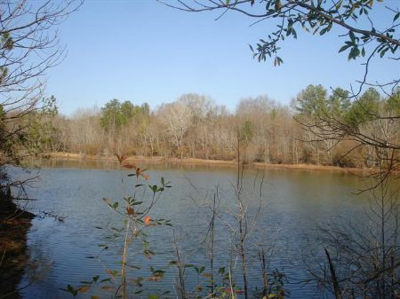 Old Country Farm With A 4 Acre Pond : Butler : Taylor County : Georgia