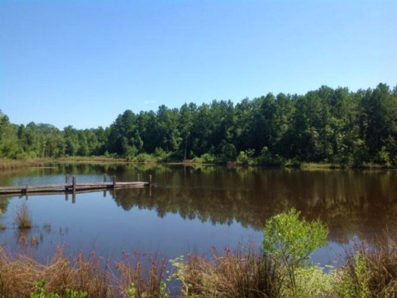 Twin Lakes Farm : Marion : Perry County : Alabama