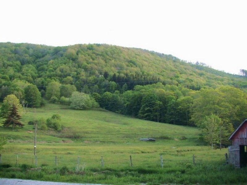 Acreage With Helton Creek Frontage : Whitetop : Grayson County : Virginia