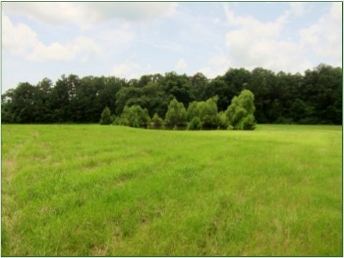 29.11 Acres In Hinds County : Terry : Hinds County : Mississippi