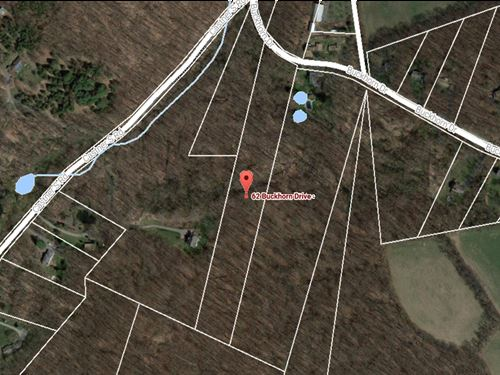 6.15+/-acre Wooded Residential Lot : Belvidere : Warren County : New Jersey