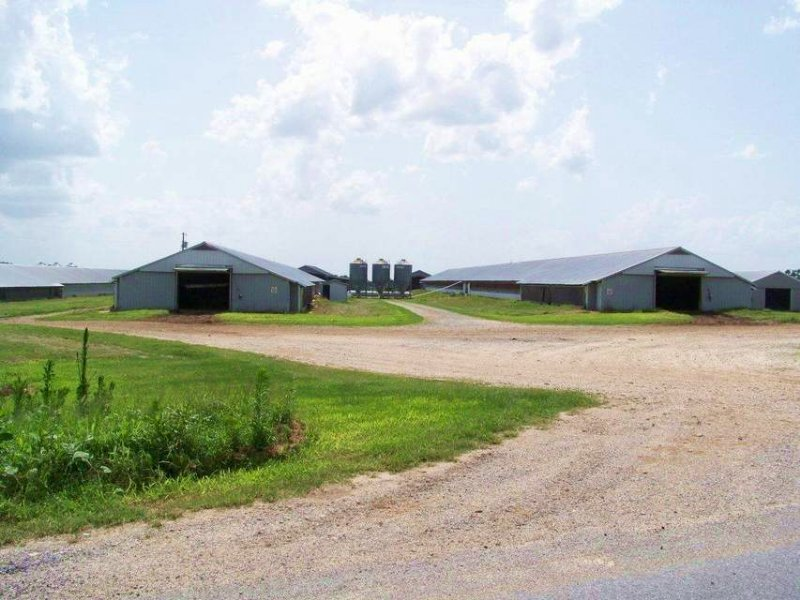 8 House Broiler And Cattle Farm Land For Sale Grove