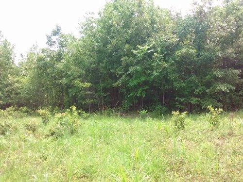 Waterfork : Irwinton : Wilkinson County : Georgia