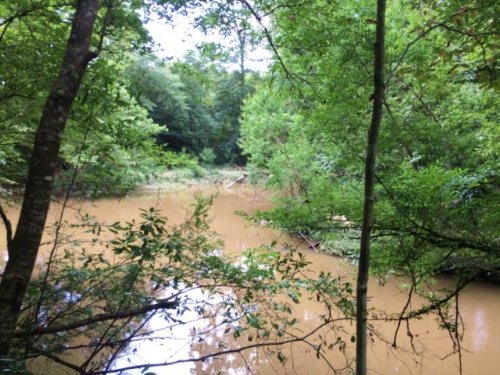 Amite County, Ms Land For Sale : Liberty : Amite County : Mississippi